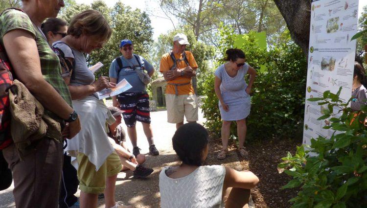 Les pieds dans la biodiversité (3)