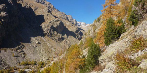Option milieu montagne - mercantour (3)